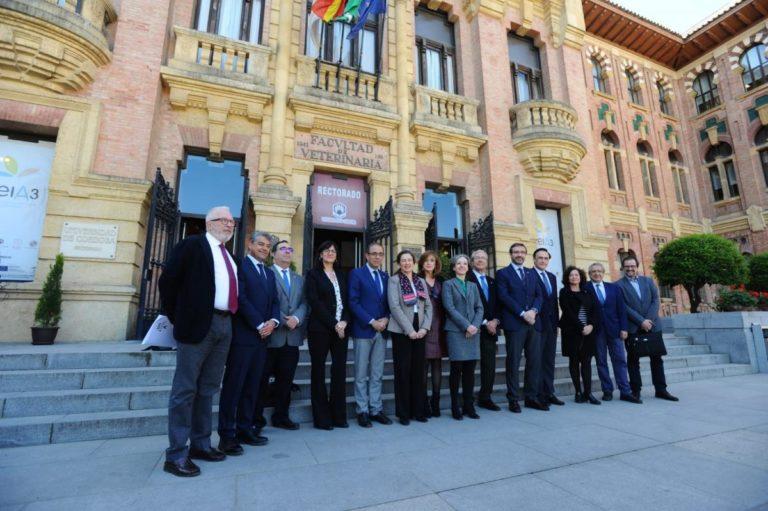 Sobre la fusión de grados en Andalucía
